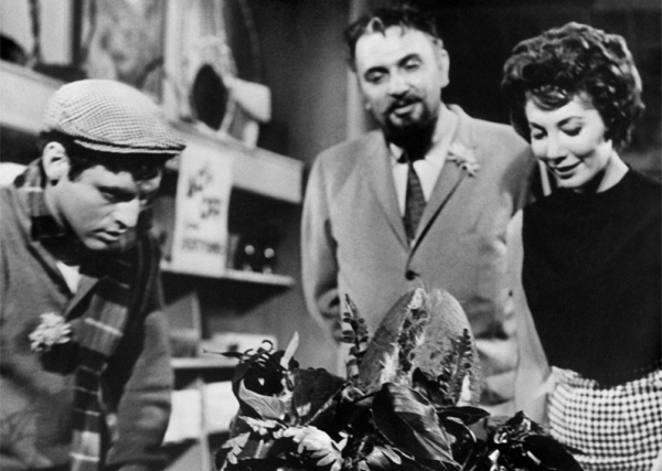 Little Shop of Horrors: No empoderen a la hierba