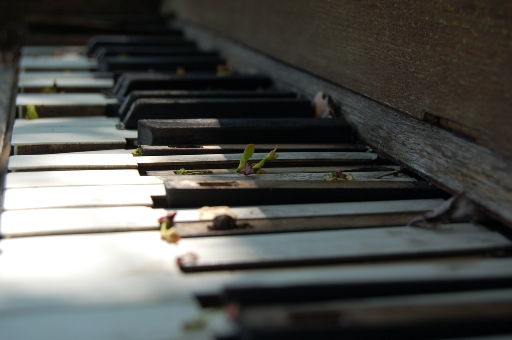 música piano