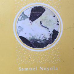 samuel noyola