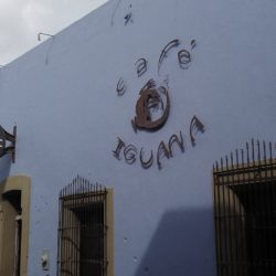 café iguana